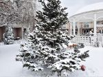 """Гостевой дом """"Ле-Ди"""" в снегу"""