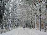 Зима на Курортной улице
