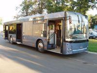 Низкопрофильные автобусы в Симферополе бесполезны для инвалидов
