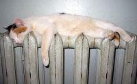 Восстановлена подача тепла жителям домов на Курортной
