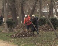 Акция по уборке городского парка Саки