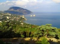 На первом земельном аукционе в Крыму продали два участка, 18 февраля 2011