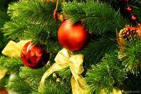 Поздравление Сакского городского головы с Новым годом и Рождеством