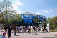 В Евпатории открылся самый большой в Украине дельфинарий