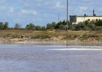 Поиски лечебной грязи в двух соленых озерах под Евпаторией, 19 июня 2012
