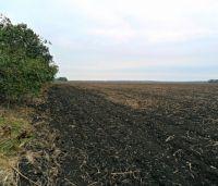Суд отменил передачу фермерам 80 га земли в сакском районе