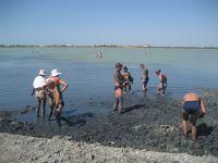 Крымскую лечебную грязь пересчитали, 24 декабря 2012