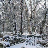 Саки - самый перспективный круглогодичный курорт Крыма