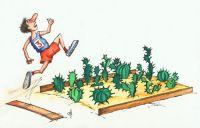 Крымчане на Кубке Украины по легкой атлетике