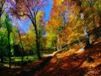 В Крыму ожидается теплый октябрь, 3 октября 2014