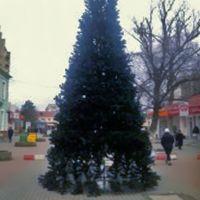 Открытие главной сакской Ёлки, 17 декабря 2014