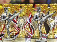 Кубок по Контактному каратэ в Новофедоровке, 15 января 2015