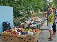 В Саках разворачивается борьба с не узаконенной торговлей, 16 марта 2015