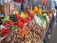 Сельхоз ярмарка в Саках