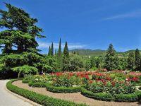 Никитский ботанический сад открывает маршрут для колясочников