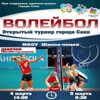 Турнир по волейболу, 28 февраля 2017