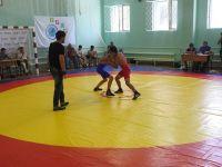 В Саках состоялся Фестиваль спортивной борьбы