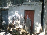 Активисты ОНФ проверили аварийные дома в Саках