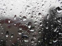 Проведен анализ дождевой воды в Саках
