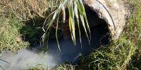 В Саках в озера Чокрак и Ковш незаконно сливают отходы