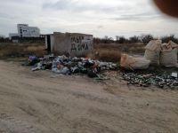 Активисты ОНФ провели уборку Южной Косы