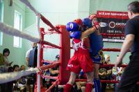 В Саках прошёл Кубок Победы по тайскому боксу