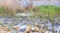 Почему сбросили сточные воды в озеро Чокрак