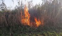 В селе Ивановка горит камыш
